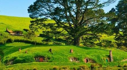 新西兰留学w88top官网条件