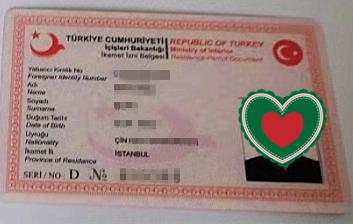 土耳其移民